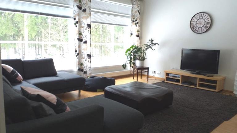 Olohuone, jossa on sohva ja televisio.